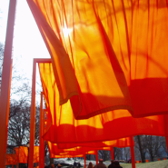 "Christo and Jeanne-Claude's ""Gates"" — a ten-year reminiscence"