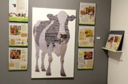 The Sexual Politics of Meat Exhibition