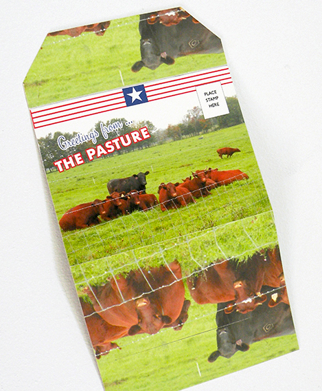 Greetings from the Pasture postcard by Nava Atlas
