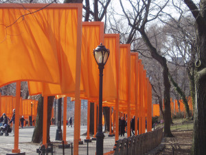 "Christo and Jeanne-Claude ""Gates"" Central Park"