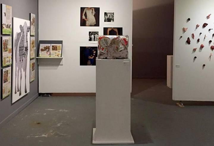 SPOM installation view -The Animal Museum, LA